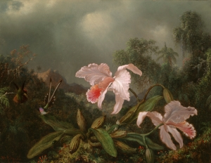 Martin Johnson Heade, Jungle Orchids and Hummingbirds (1872)